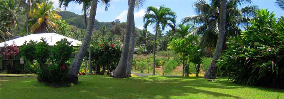 Relax in Ariana's lush gardens